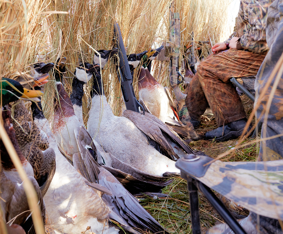 Oklahoma Goose Hunting Guides | Late Season Duck Hunting Tips