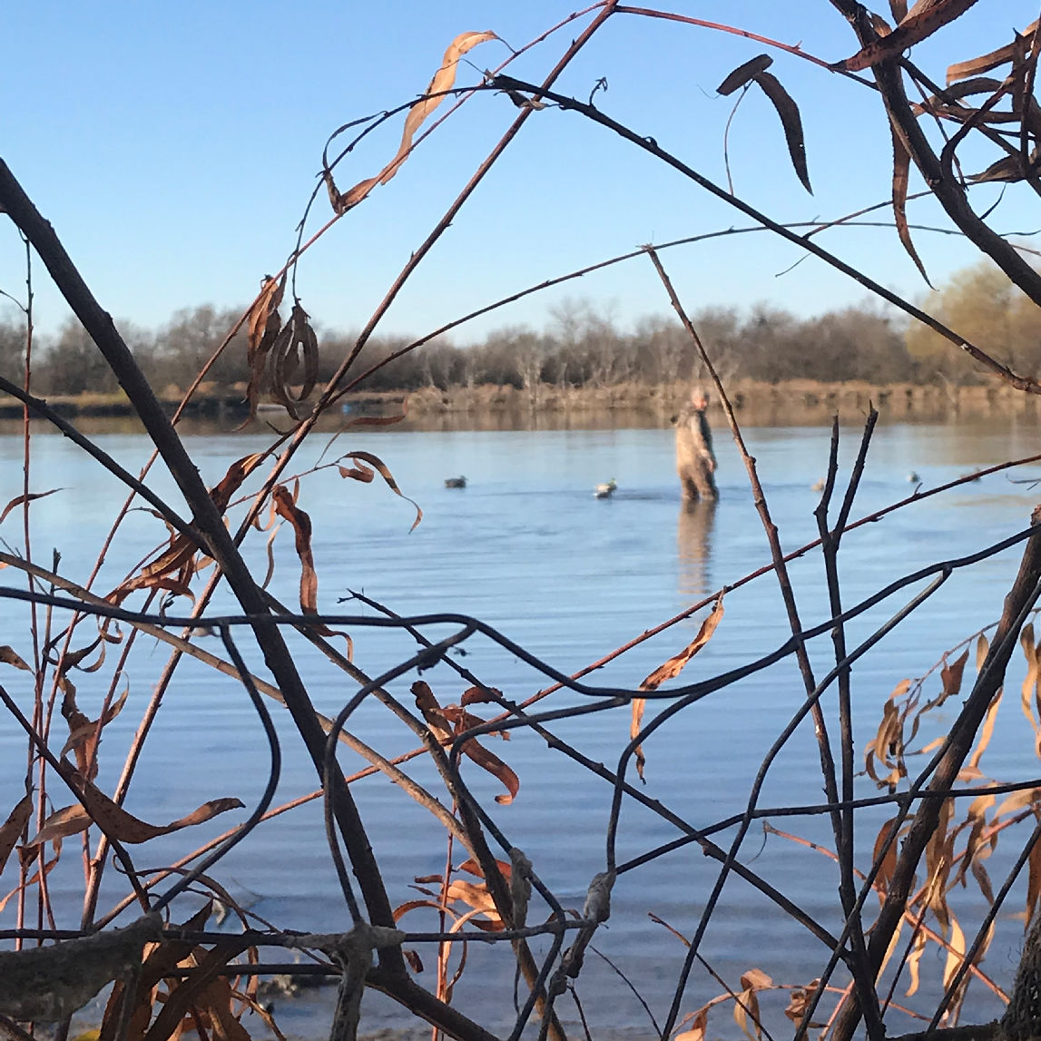 North Texas Duck Hunting Guide - North Texas Waterfowl